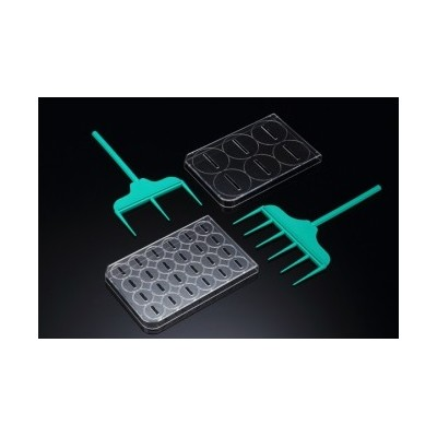 SPLScar™ Scratcher with 24well lid, HDPE, 1mm, Sterile, Sterile, SPL, 20 szt.