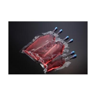 SPLPermea™ Bag, PE, 250ml, Sterile, SPL, 10 szt.
