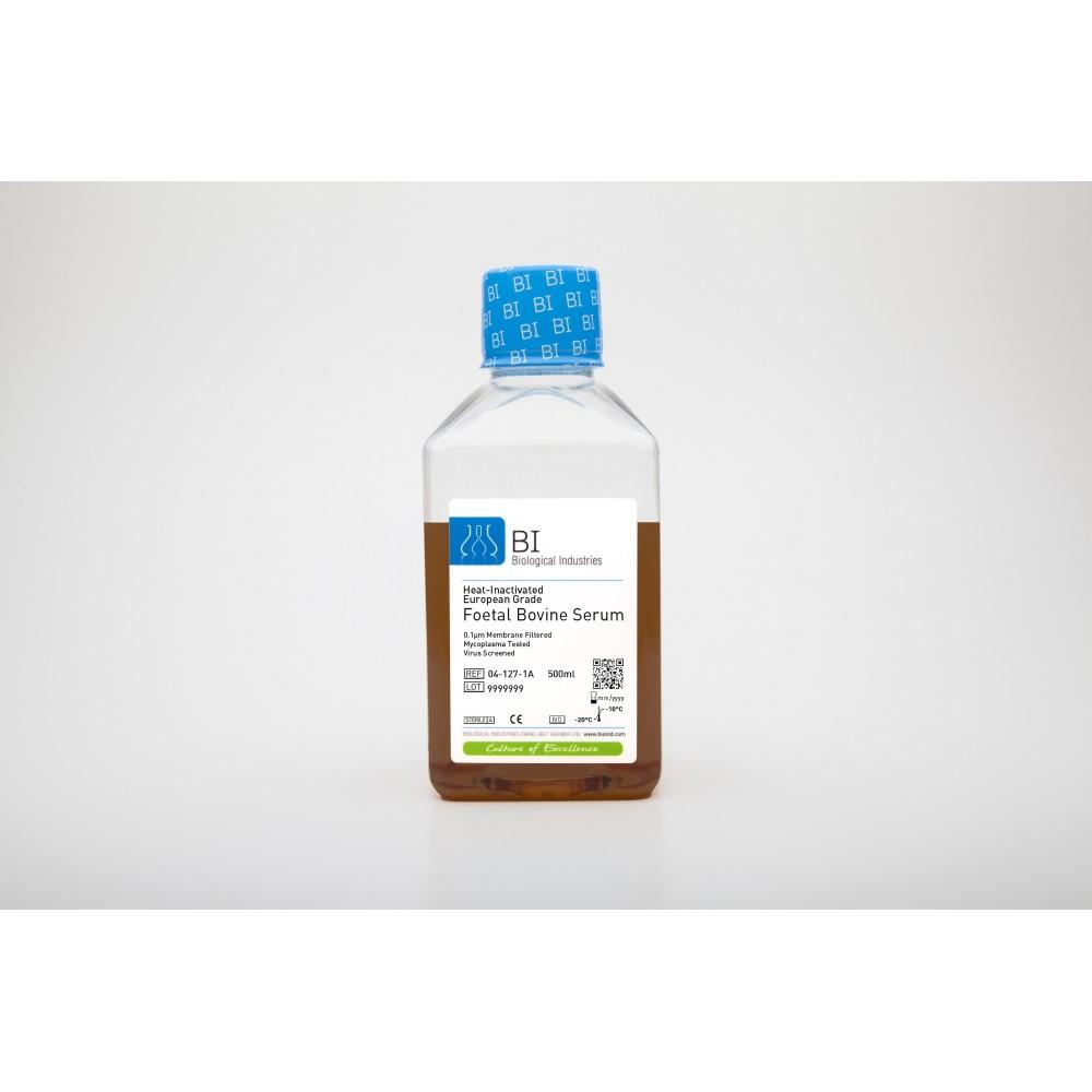 Foetal Bovine Serum (FBS European Grade) Heat Inactivated - Płodowa surowica bydlęca, inaktywowana termicznie