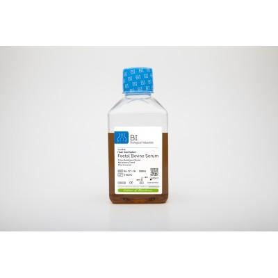 Certified Fetal Bovine Serum (FBS) Heat Inactivated - Certyfikowana płodowa surowica bydlęca, inaktywowana termicznie