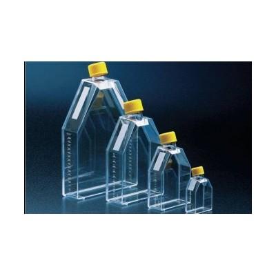 Tissue culture flask 150 cm² / vent screw cap, TC treated - Butelki do hodowli 150 cm² z wentylacją, TPP