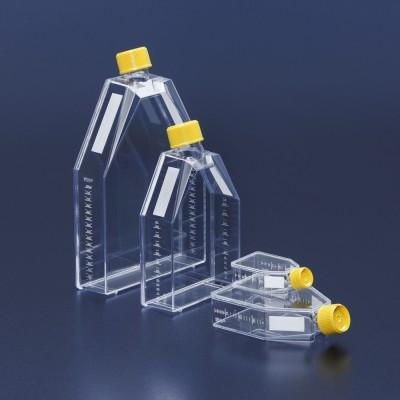 Tissue culture flask 25 cm² / vent screw cap, TC treated - Butelki do hodowli 25 cm² z wentylacją, TPP