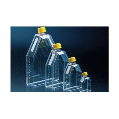 Tissue culture flask 25 cm² / filter screw cap, TC treated - Butelki do hodowli 25 cm² z filtrem, TPP
