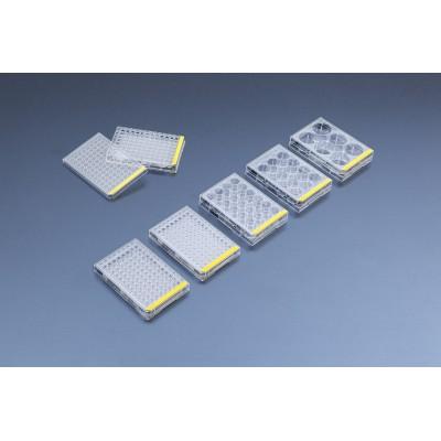 Tissue culture test plate, 6 wells (4 pcs) - Płytki do hodowli, 6 studzienek, sterylne, TPP, pakowane po 4 szt., 72 szt.