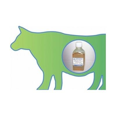 Certified Fetal Bovine Serum (FBS) - Certyfikowana płodowa surowica bydlęca