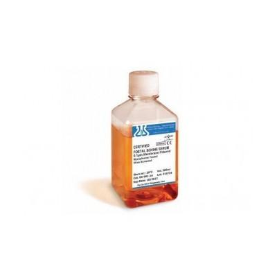 Certified Fetal Bovine Serum, FBS Australian Origin - Płodowa surowica bydlęca (FBS) pochodząca z Australii