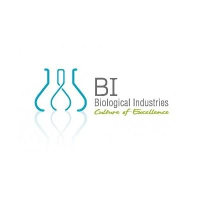 Amphotericin B (10X) Solution, 100 ml
