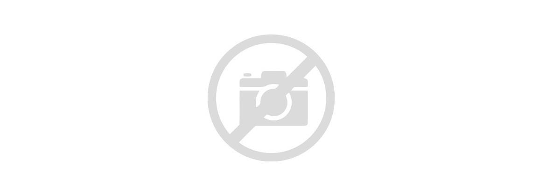 MVEC: EndoGo™ XF Medium